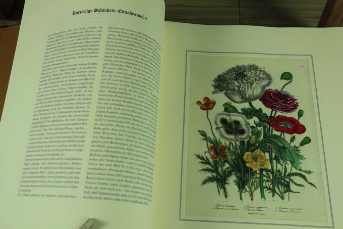 Buch the ladies flowergarden Margot Schubert Battenberg 1980