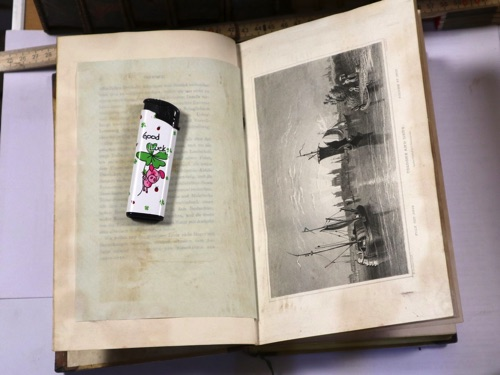 Tom Bleson views of the Rhine London 1832 Buch antik